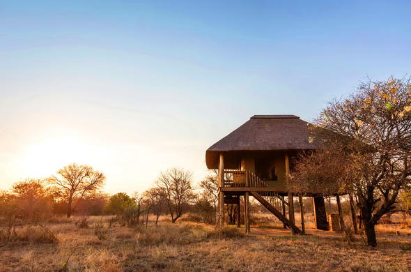 Exterior of nThambo Tree Camp.